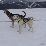 Además de esquiar en Andorra, se pueden hacer muchas actividades en Vallnord