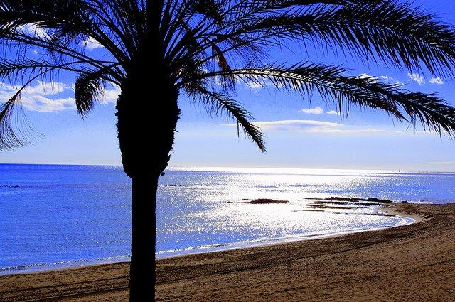 Málaga Guapa despierta amor por la Costa del Sol