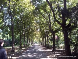 Lugares con encanto en Darmstadt (Alemania): Parque Rosenhöhe