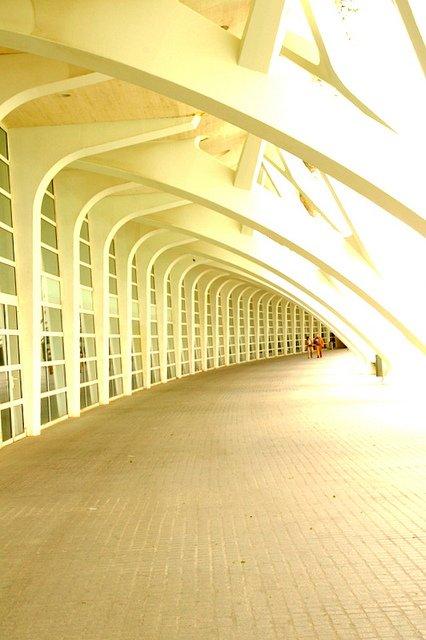 Paseo por la Ciudad de las Artes y Ciencias de Valencia