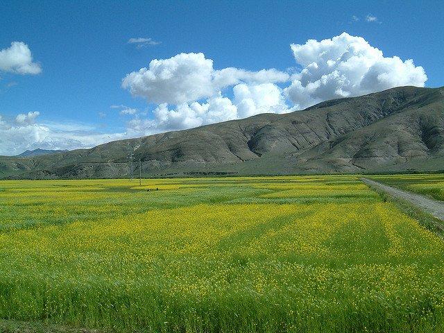 Películas para viajar: Tíbet