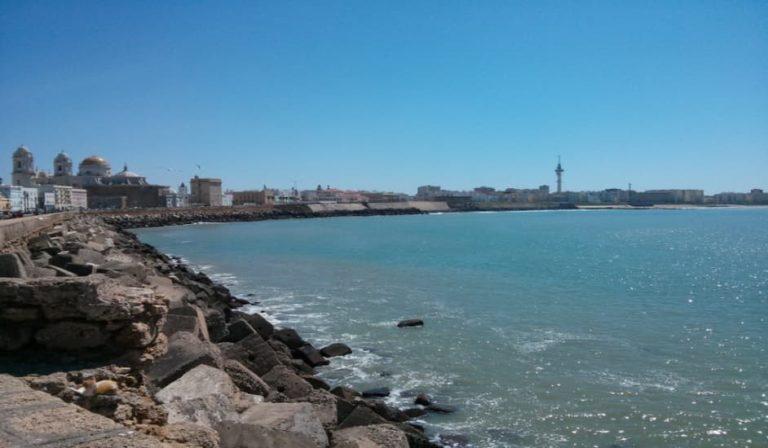Una de las muchas cosas qué ver en Cádiz es su paseo