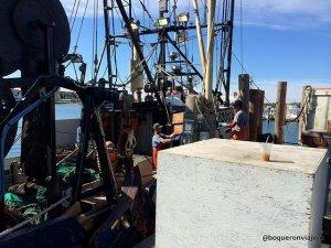 Puerto de Montauk, Long Island