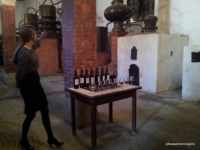 Guide explaining the process in the Tio Pepe Bodegas