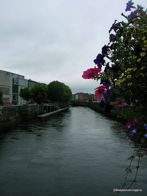 River Shannon in Limerick