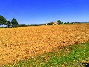 Granja de un Amish en Lancaster PA