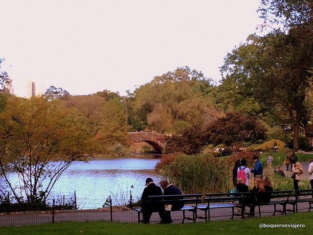 Autumn in Central Park