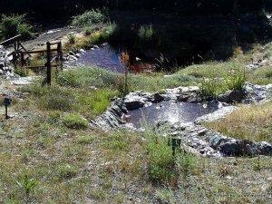 Jardín Botánico Endemismos Sierra Nevada Arroyo
