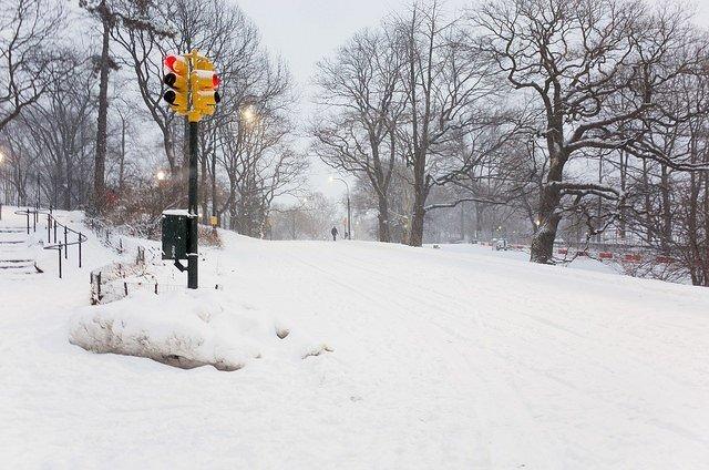 West Drive Central Park Juno 2015