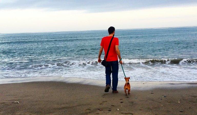 Un fin de semana en Málaga, cómo aprovecharlo