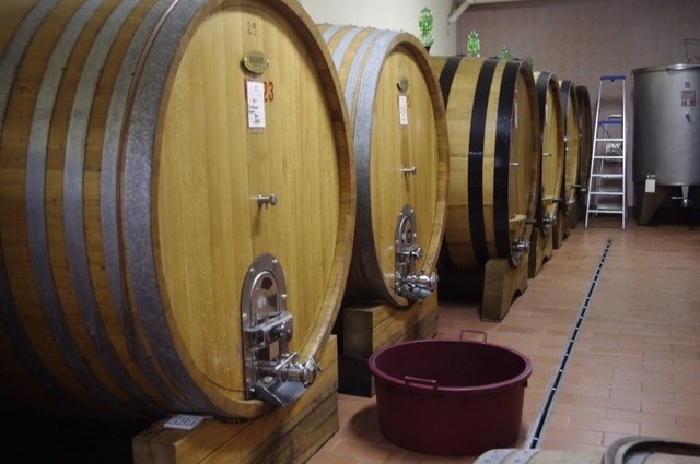Italian barrels at Il Palagio