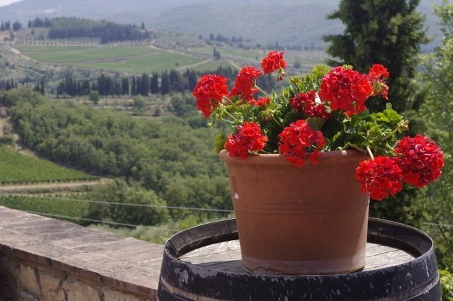 Gorgeous views of Tuscany from Il Palagio