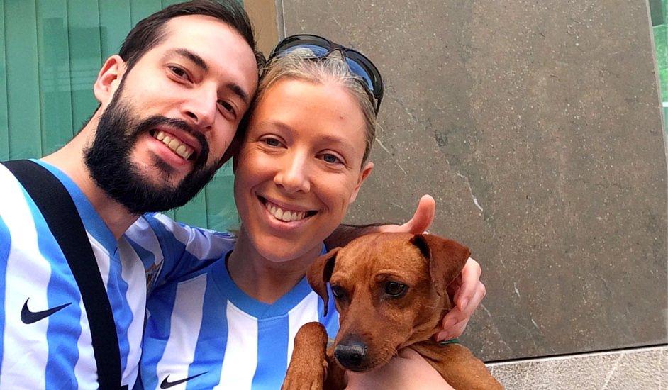 When Dino Came Into Our lives, How To Adopt a Dog in Málaga