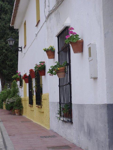Una pared con flores en Carratraca, Málaga