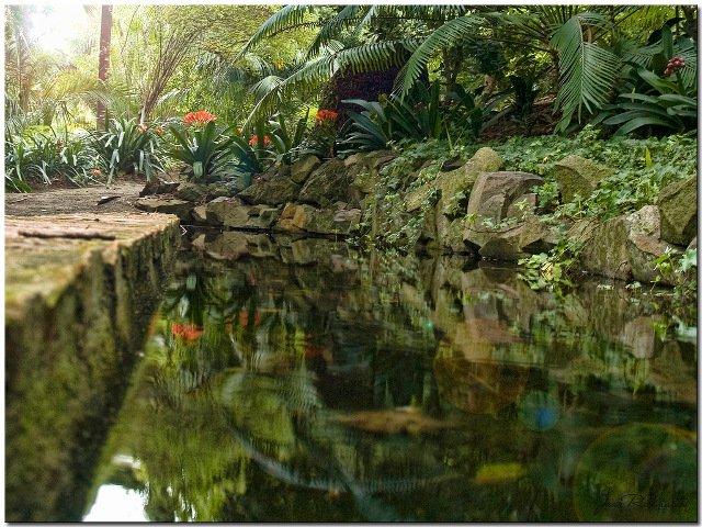 El Jardín Botánico de la Concepción abre sus puertas durante San Valentín en Málaga