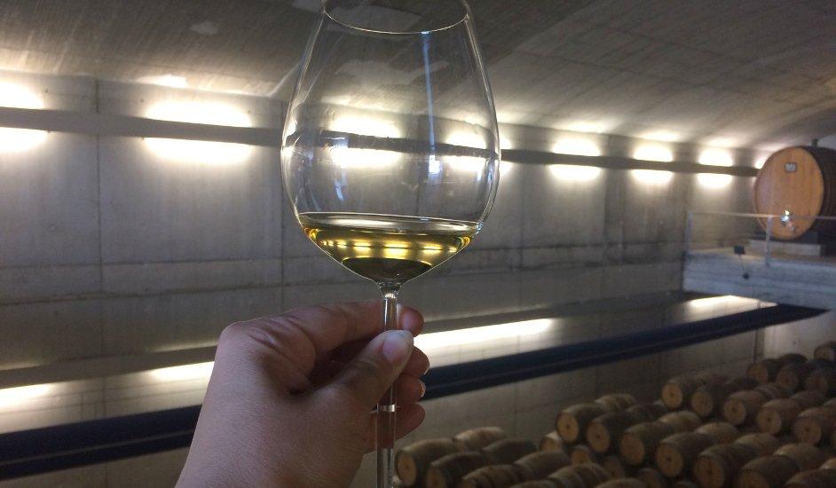 Enobús, la experiencia de la Ruta de la Rioja Alavesa para amantes del vino