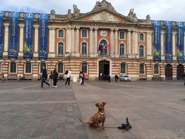 Dino with the Capitole Toulouse