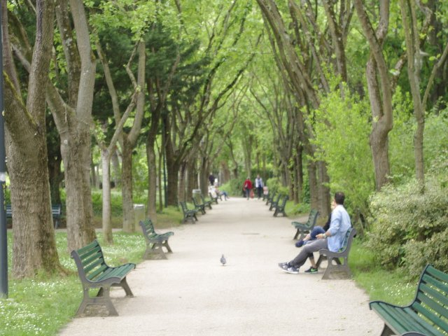 Jardin en Toulouse