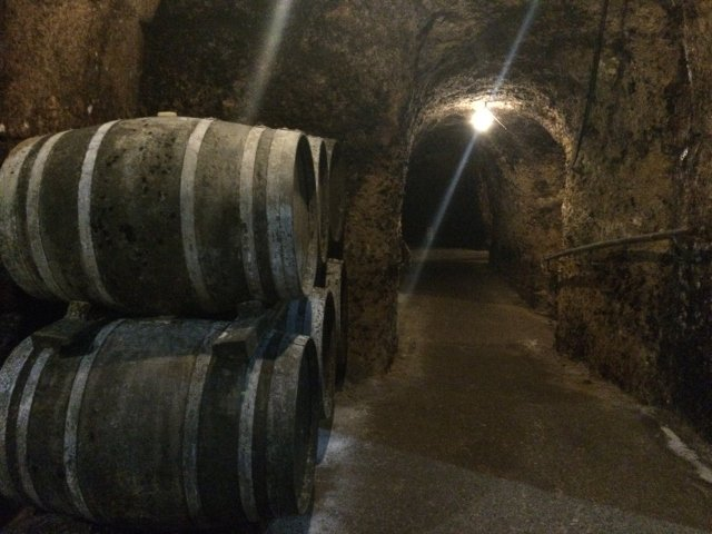 The bodegas Carlos San Pedro with Thabuca Wine Tours