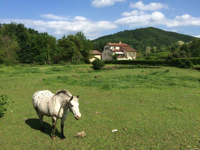 Una casa con caballo en La Garrotxa