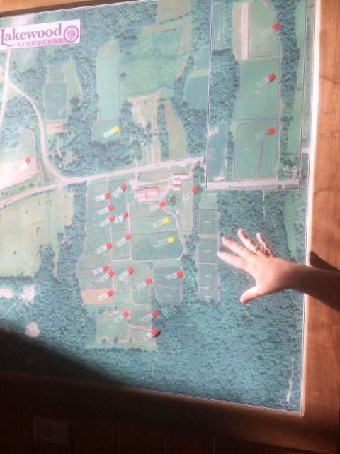 Map of the vineyards at Lakewood Vineyards Finger Lakes New York
