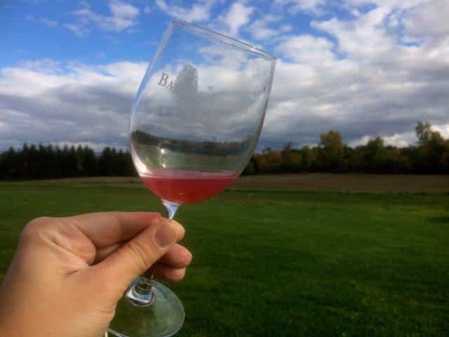Probando un vino rosado del barril en Barnstormer Winery