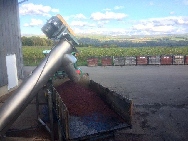 Touring the vineyards at Lakewood Vineyards Finger Lakes New York