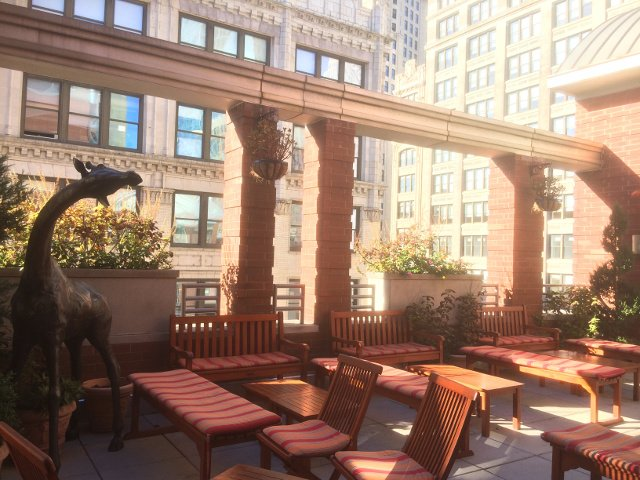 Rooftop garden at Hotel Giraffe New York