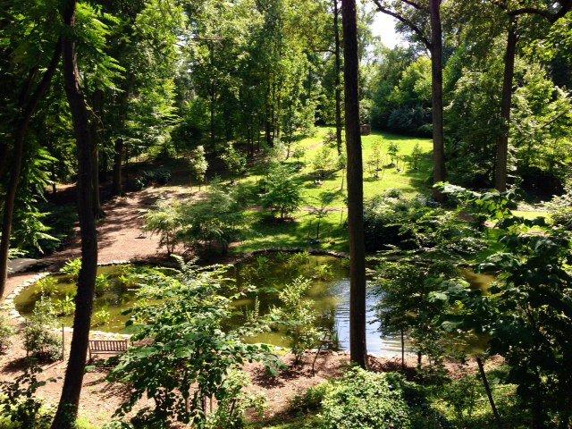 Tregaron Conservancy Trails en Washington DC