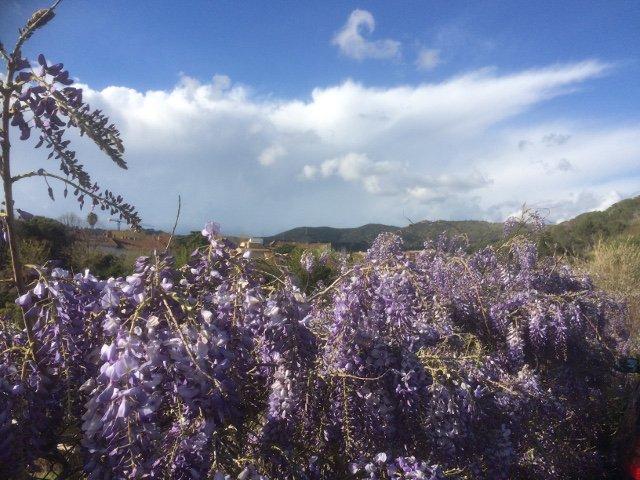 Catalan Countryside Day Trip con Devour Barcelona