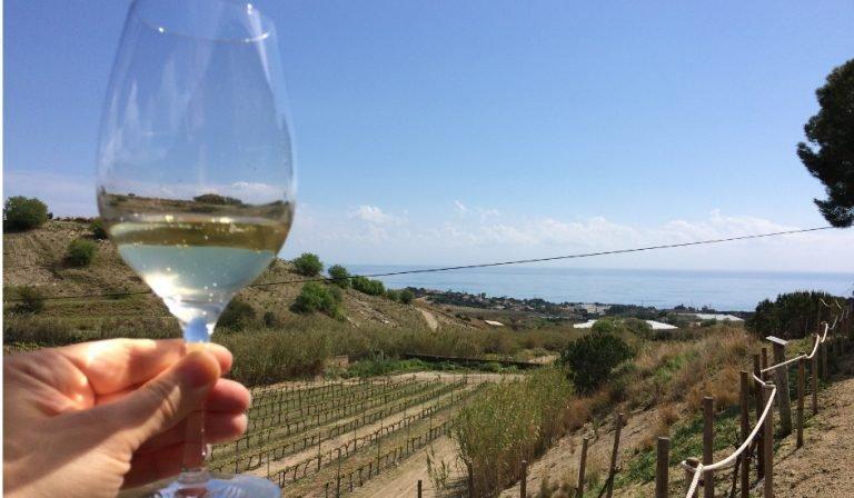 Probando vino blanco de la zona en el Catalan Countryside Day Trip con Devour Barcelona