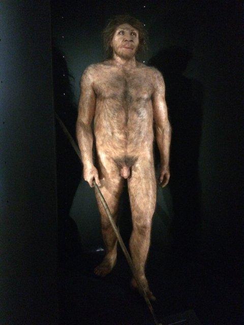 Museum of Human Evolution in Burgos