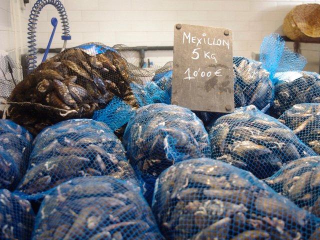 Mejillones en el Mercado Santiago de Compostela