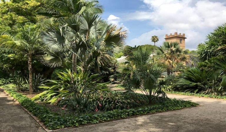 Entrando a los Jardines Botánicos de Valencia