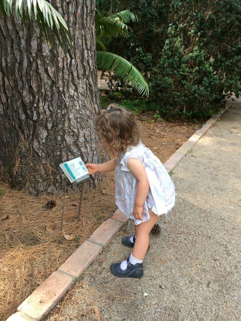 Paula aprendiendo sobre los árboles
